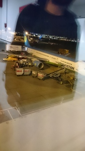 Uzbekistan Airways Plane