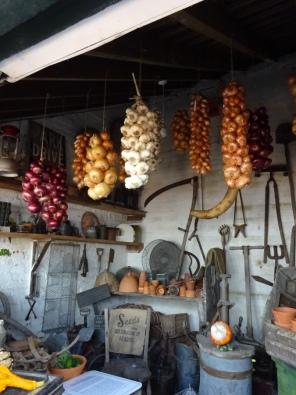 Onions & Garlic