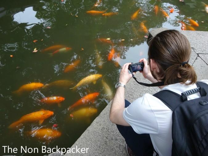 Fish in the Yuyuan Gardens